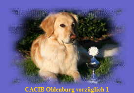 CACIB Oldenburg V 1